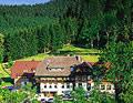 Waldhotel Fehrenbach Hinterzarten Südschwarzwald