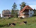Ferienwohnungen im Pfisterhof St. Märgen